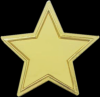 The Recognition Star Lapel Pin Star Awards