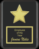 The Recognition Star Plaque Star Plaques
