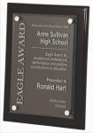 Black Piano Finish Plaque Achievement Awards